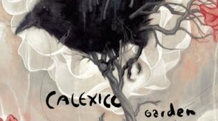 Calexico_garden_ruin