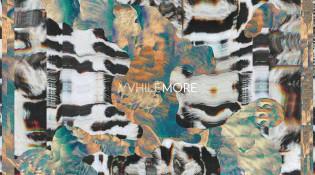 vvhile_more