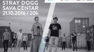 ANA STRAY DOGG 2